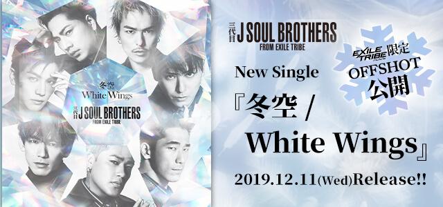 冬空 / White Wings