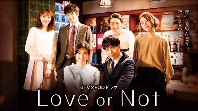 「Love or Not」